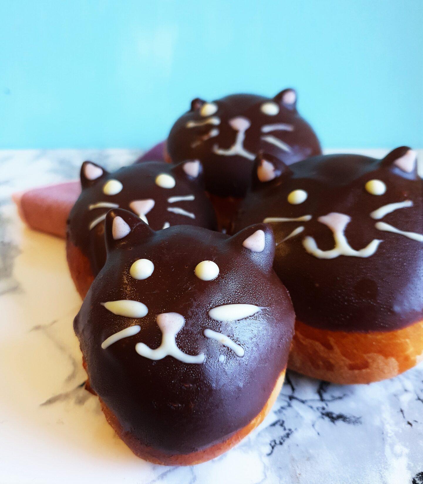 Fejr fastelavn med fastelavnsbolle katte
